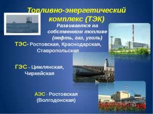 Топливно-энергетический комплекс (ТЭК) Развивается на собственном топливе (не