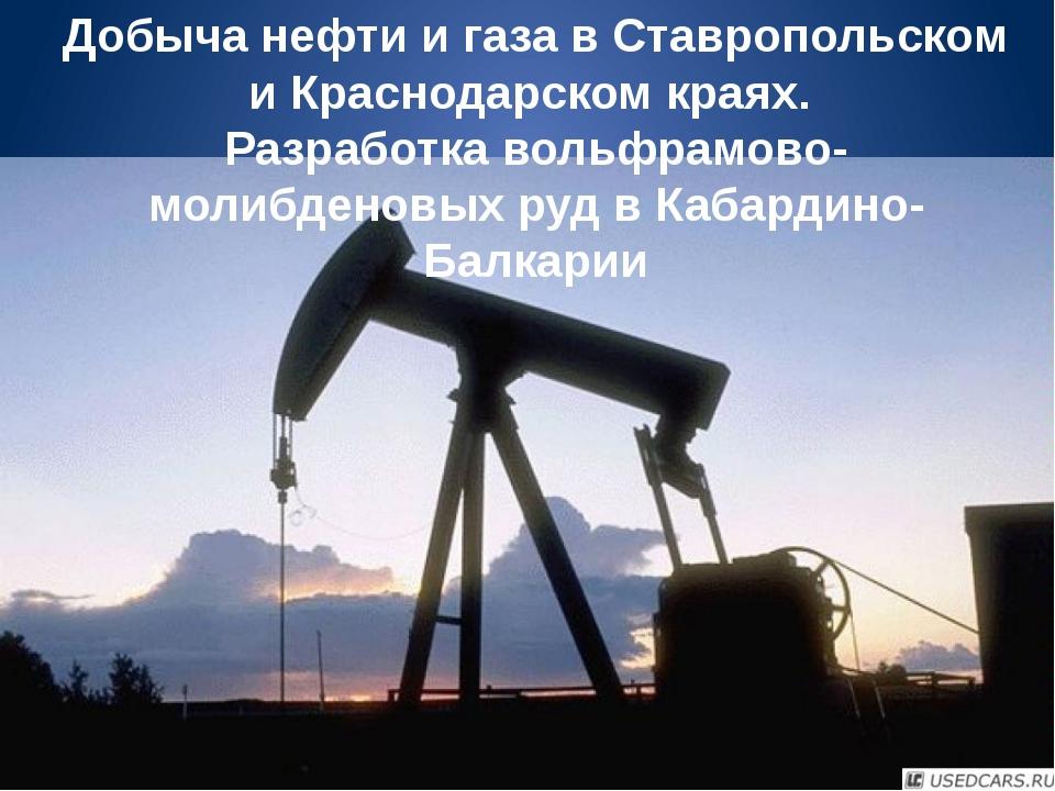 Добыча нефти и газа в Ставропольском и Краснодарском краях. Разработка вольфр...