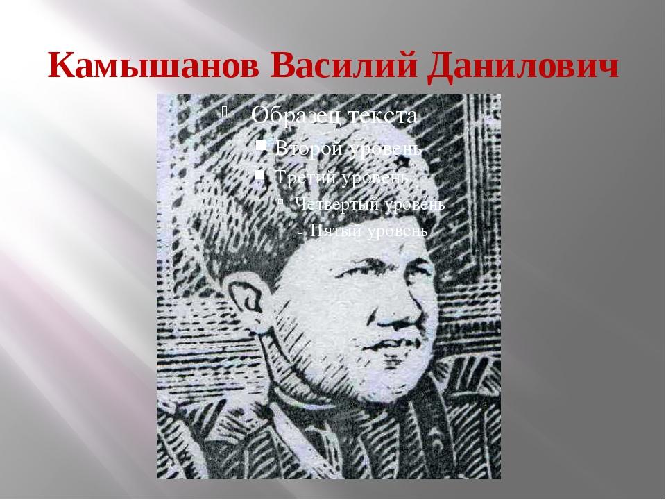 Камышанов Василий Данилович
