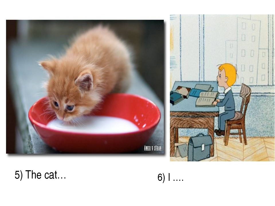5) The cat… 6) I ….