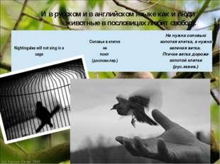 И в русском и в английском языке как и люди животные в пословицах любят свобо