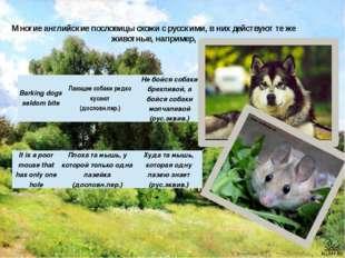 Многие английские пословицы схожи с русскими, в них действуют те же животные,