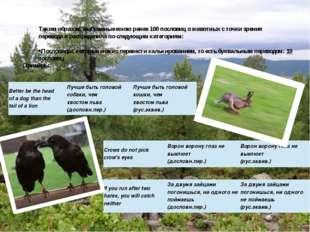 Таким образом, выбранные мною ранее 100 пословиц о животных с точки зрения пе