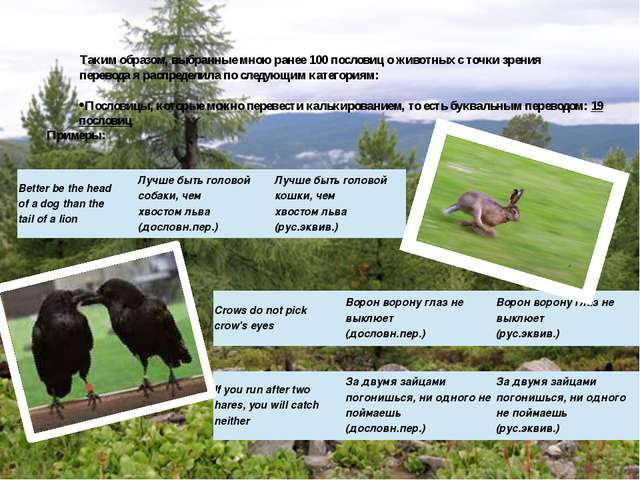 Таким образом, выбранные мною ранее 100 пословиц о животных с точки зрения пе...