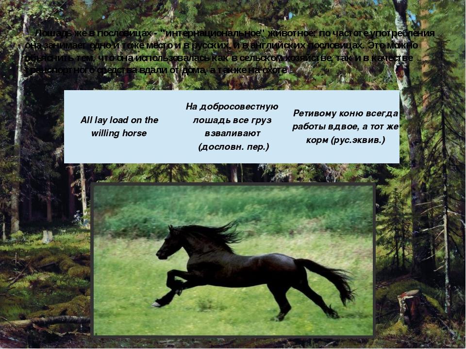 """Лошадь же в пословицах - """"интернациональное"""" животное: по частоте употреблени..."""