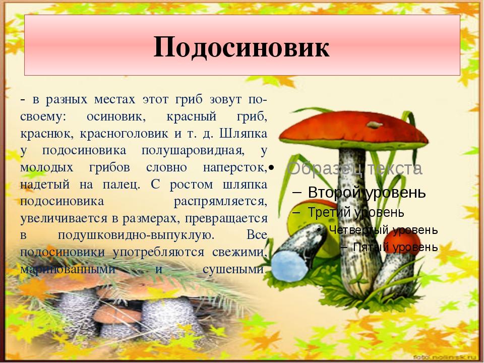 Сыроежка - очень разнообразные по окраске шляпок грибы. Настоящая разноцветна...