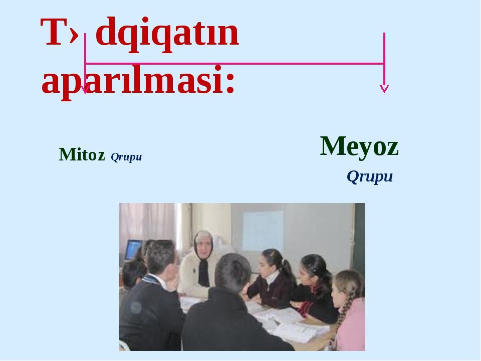 Tədqiqatın aparılmasi: Mitoz Qrupu Meyoz Qrupu