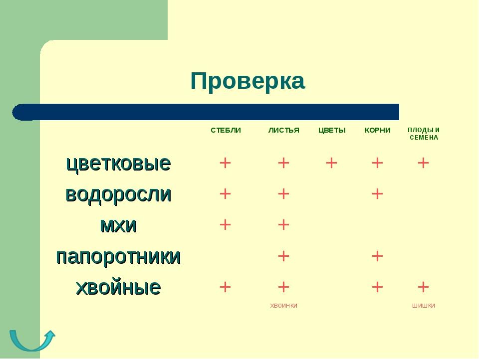 Проверка СТЕБЛИЛИСТЬЯЦВЕТЫКОРНИПЛОДЫ И СЕМЕНА цветковые+++++ водоро...