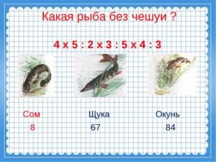Какая рыба без чешуи ? 4 х 5 : 2 х 3 : 5 х 4 : 3 Сом Щука Окунь 8 67 84