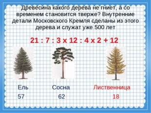 Древесина какого дерева не гниет, а со временем становится тверже? Внутренни