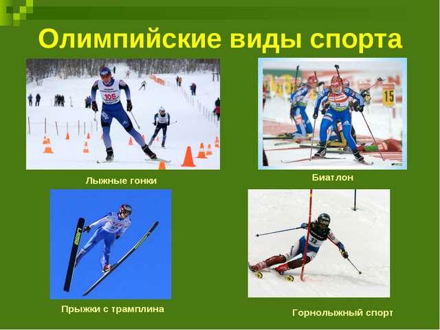 Олимпийские виды спорта Лыжные гонки Биатлон Прыжки с трамплина Горнолыжный с...