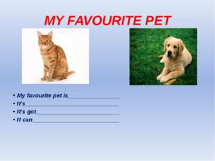 MY FAVOURITE PET My favourite pet is________________ It's____________________