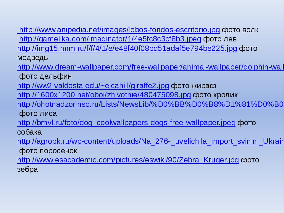 http://www.anipedia.net/images/lobos-fondos-escritorio.jpg фото волк http://...