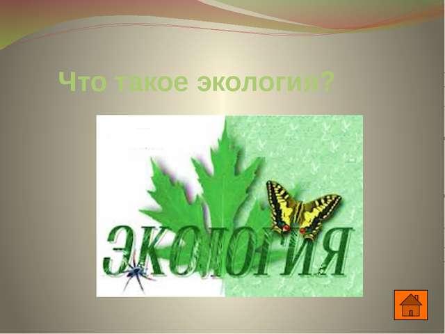 Домашнее задание: Учебник с. 10-12 Реферат по теме: «Ученые – экологи».