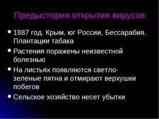 Предыстория открытия вирусов 1887 год. Крым, юг России, Бессарабия. Плантации