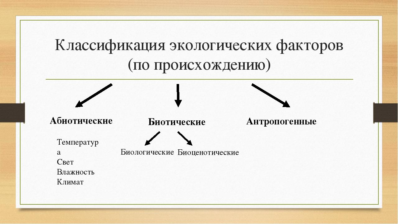 Классификация экологических факторов (по происхождению) Абиотические Биотичес...
