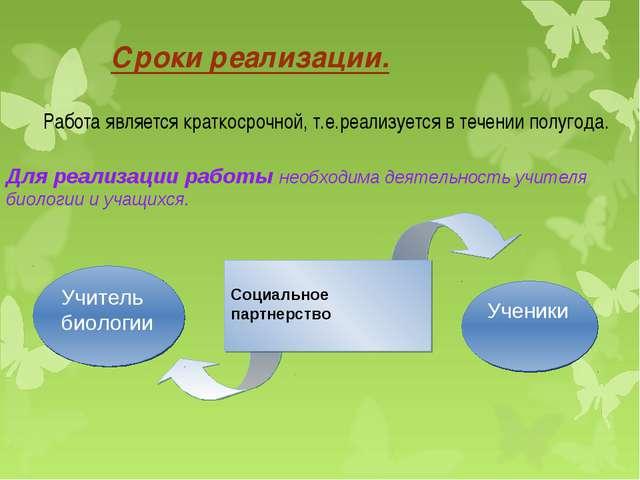Сроки реализации. Работа является краткосрочной, т.е.реализуется в течении п...