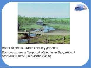 Волга берёт начало в ключе у деревни ВолговерховьевТверской области наВал