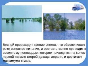 Весной происходит таяние снегов, что обеспечивает реке основное питание, и со