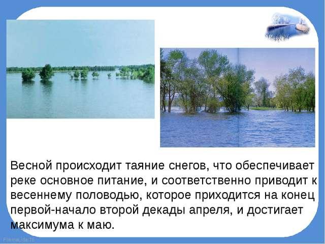 Весной происходит таяние снегов, что обеспечивает реке основное питание, и со...