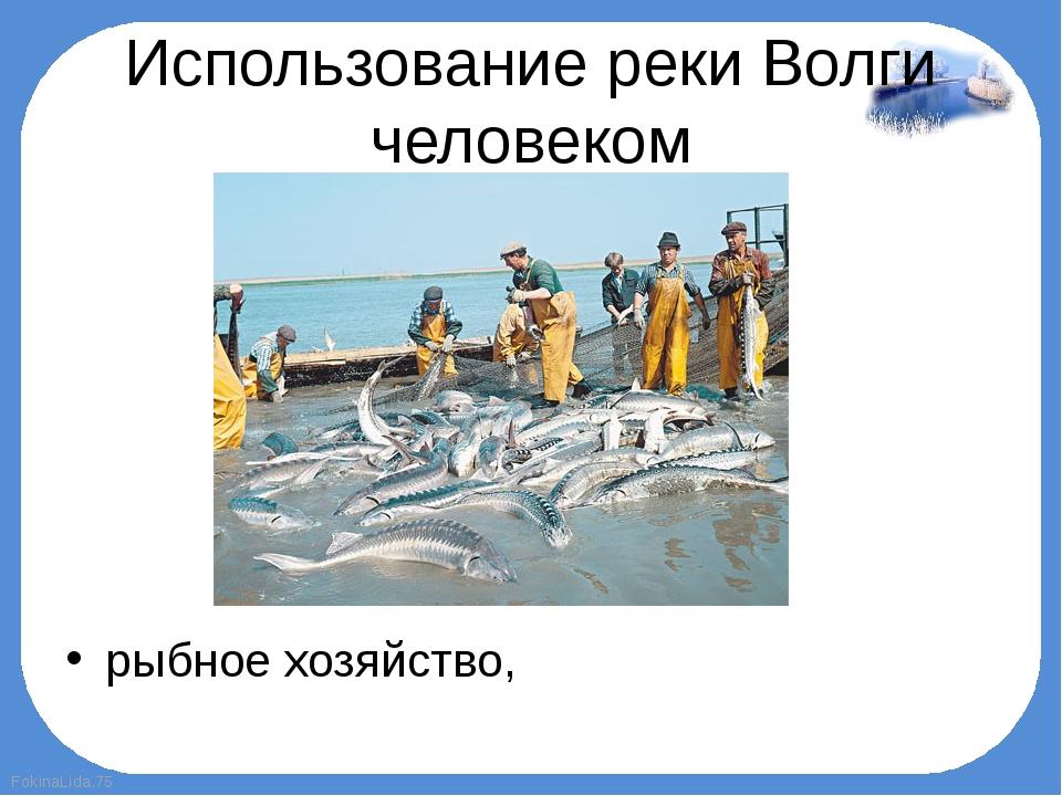 Использование реки Волги человеком рыбное хозяйство, FokinaLida.75