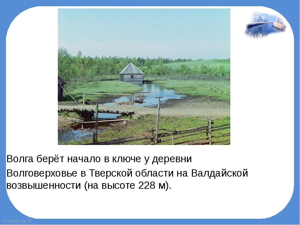 Волга берёт начало в ключе у деревни ВолговерховьевТверской области наВал...