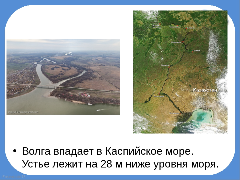Волга впадает вКаспийское море. Устье лежит на 28м нижеуровня моря. Fokin...