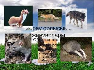 Атырау облысының жануарлары