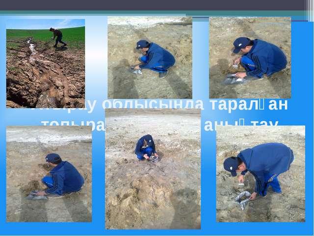 Атырау облысында таралған топырақ түрлерін анықтау