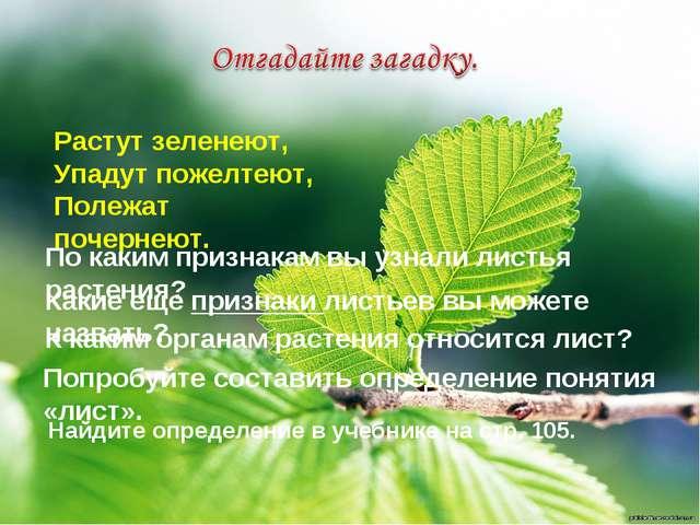 Растут зеленеют, Упадут пожелтеют, Полежат почернеют. По каким признакам вы у...