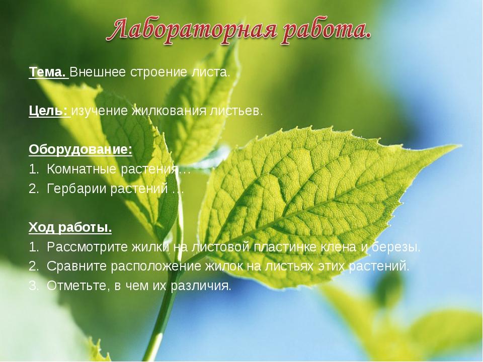 Тема. Внешнее строение листа. Цель: изучение жилкования листьев. Оборудование...