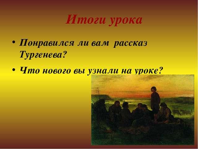 Итоги урока Понравился ли вам рассказ Тургенева? Что нового вы узнали на ур...
