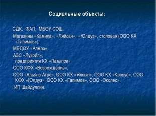 Социальные объекты: СДК, ФАП, МБОУ СОШ, Магазины «Камила», «Ляйсан», «Юлдуз»,