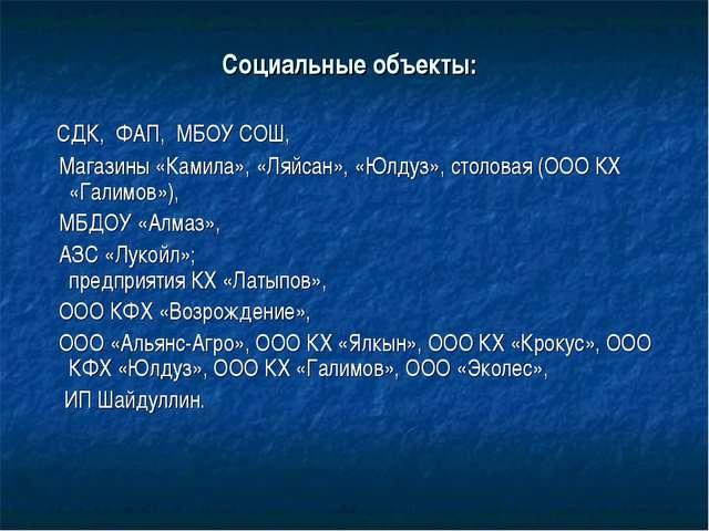 Социальные объекты: СДК, ФАП, МБОУ СОШ, Магазины «Камила», «Ляйсан», «Юлдуз»,...