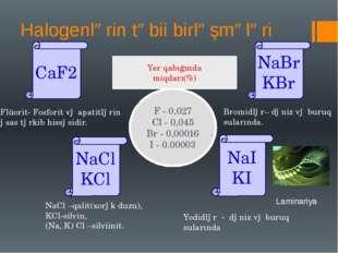 Halogenlərin təbii birləşmələri CaF2 NaBr KBr NaCl KCl NaI KI Flüorit- Fosfor