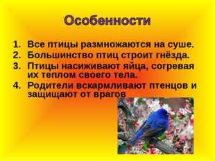 Все птицы размножаются на суше. Большинство птиц строит гнёзда. Птицы насижив