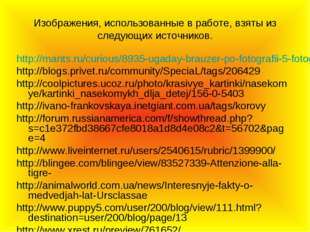 Изображения, использованные в работе, взяты из следующих источников. http://m