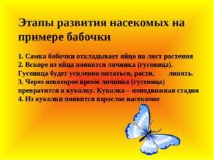 Этапы развития насекомых на примере бабочки 1. Самка бабочки откладывает яйц