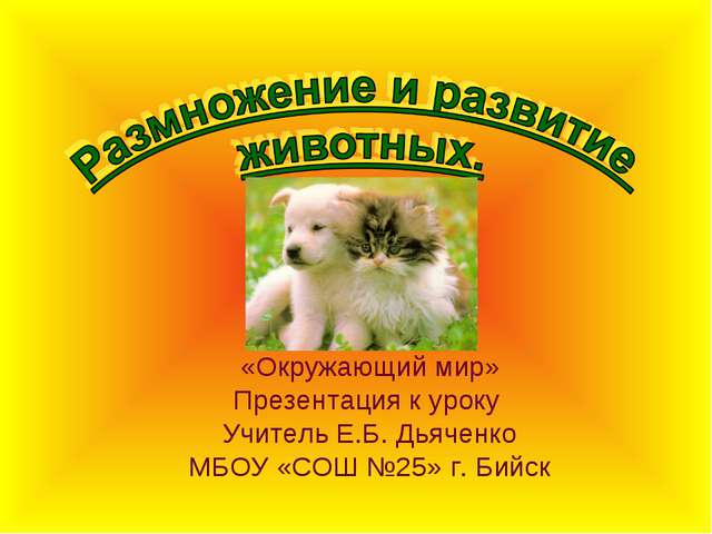«Окружающий мир» Презентация к уроку Учитель Е.Б. Дьяченко МБОУ «СОШ №25» г....
