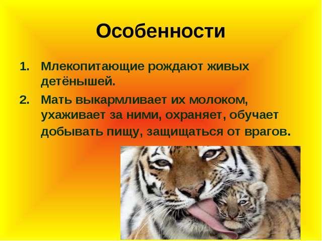 Особенности Млекопитающие рождают живых детёнышей. Мать выкармливает их молок...