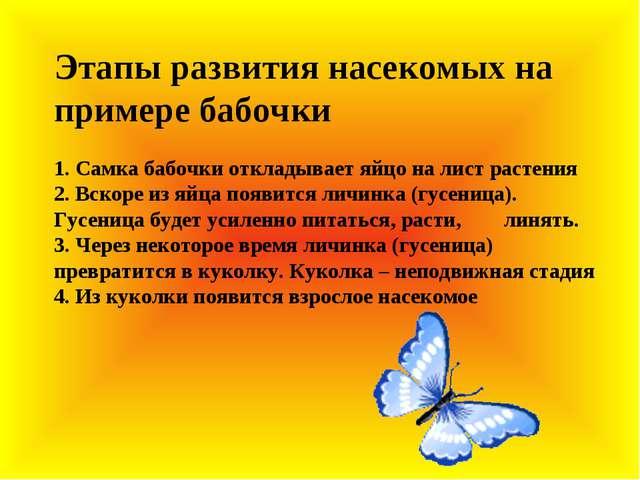 Этапы развития насекомых на примере бабочки 1. Самка бабочки откладывает яйц...