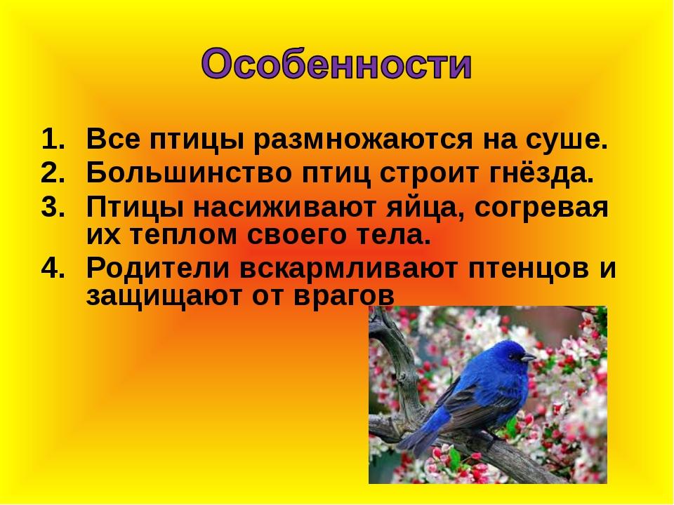 Все птицы размножаются на суше. Большинство птиц строит гнёзда. Птицы насижив...