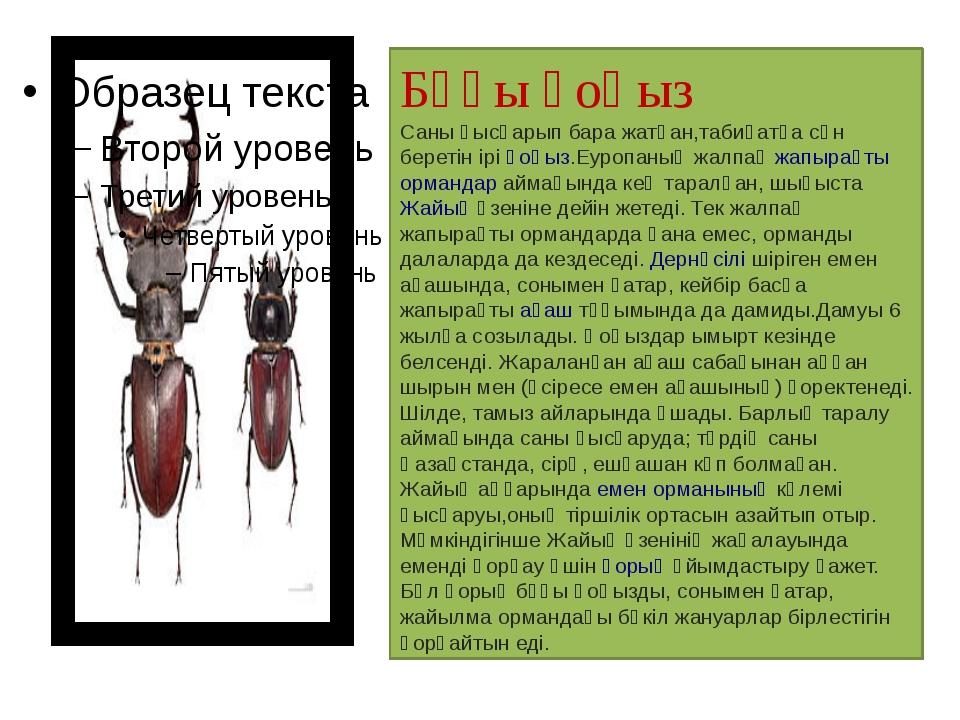 Бұғы қоңыз Саны қысқарып бара жатқан,табиғатқа сән беретін іріқоңыз.Еуропаны...