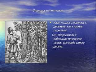 Строительный материал. Наши предки относились к деревьям, как к живым существ