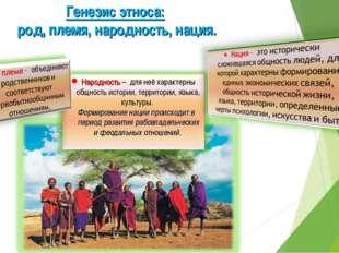 Генезис этноса: род, племя, народность, нация.