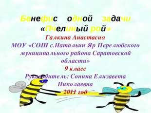 Бенефис одной задачи «Пчелиный рой» Галкина Анастасия МОУ «СОШ с.Натальин Яр