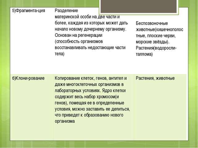 5)Фрагмента-ция Разделение материнской особи на двечасти и более, каждая из к...