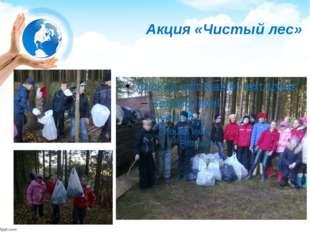 Акция «Чистый лес»