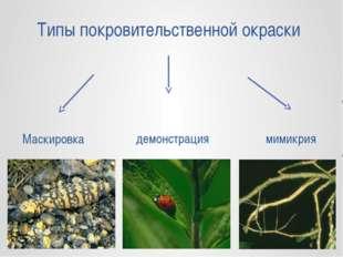 Типы покровительственной окраски Маскировка демонстрация мимикрия
