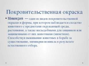 Покровительственная окраска Мимикрия — один из видов покровительственной окра